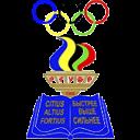 Кот Дмитрий – Белорусская Федерация Волейбола